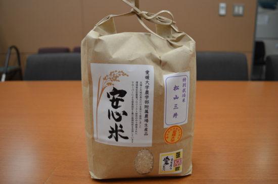 H250604 安心米